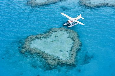 {tour-faq limit='1'}What should I wear and bring with me when going on one of your Great Barrier Reef Tours? — Matt Geldard{/faq-images}