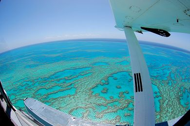 {tour-faq limit='1'}Where is the Great Barrier Reef & How Big is it? — Jarad Higgins{/faq-images}
